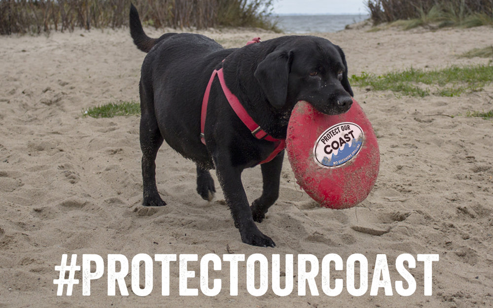 Protect-Our-Coast.jpg