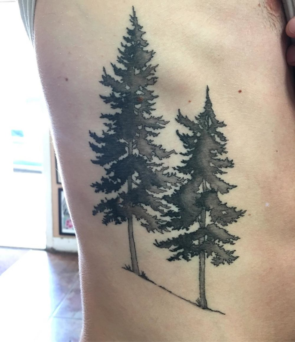 ot orth trees.jpg