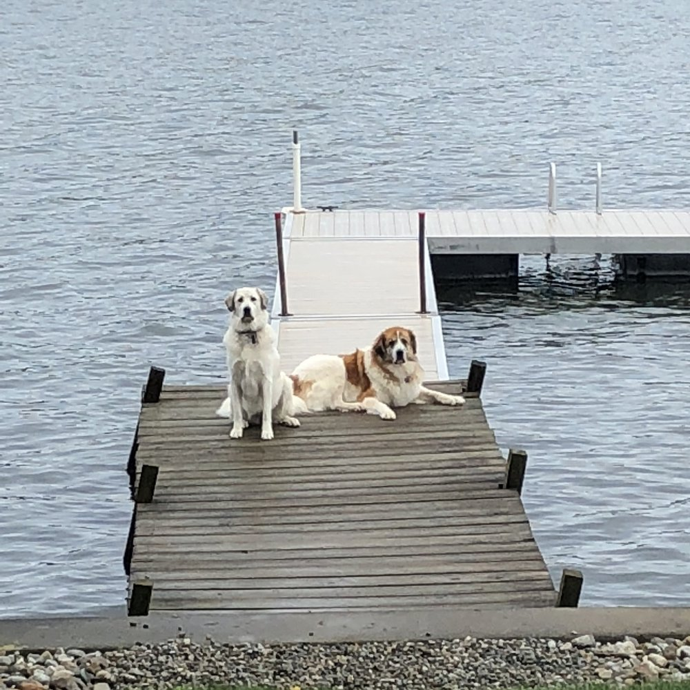 Ella & Rufus