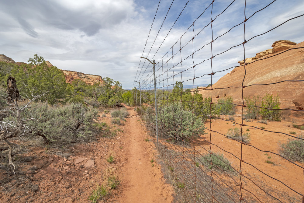 border-fence-in-the-wilderness-JZ3A9SE.jpg