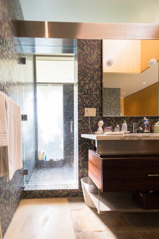 Master Bathroom III