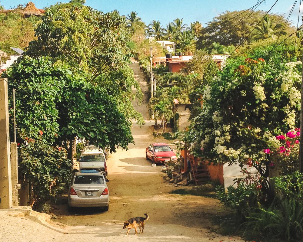 Town of Sayulita