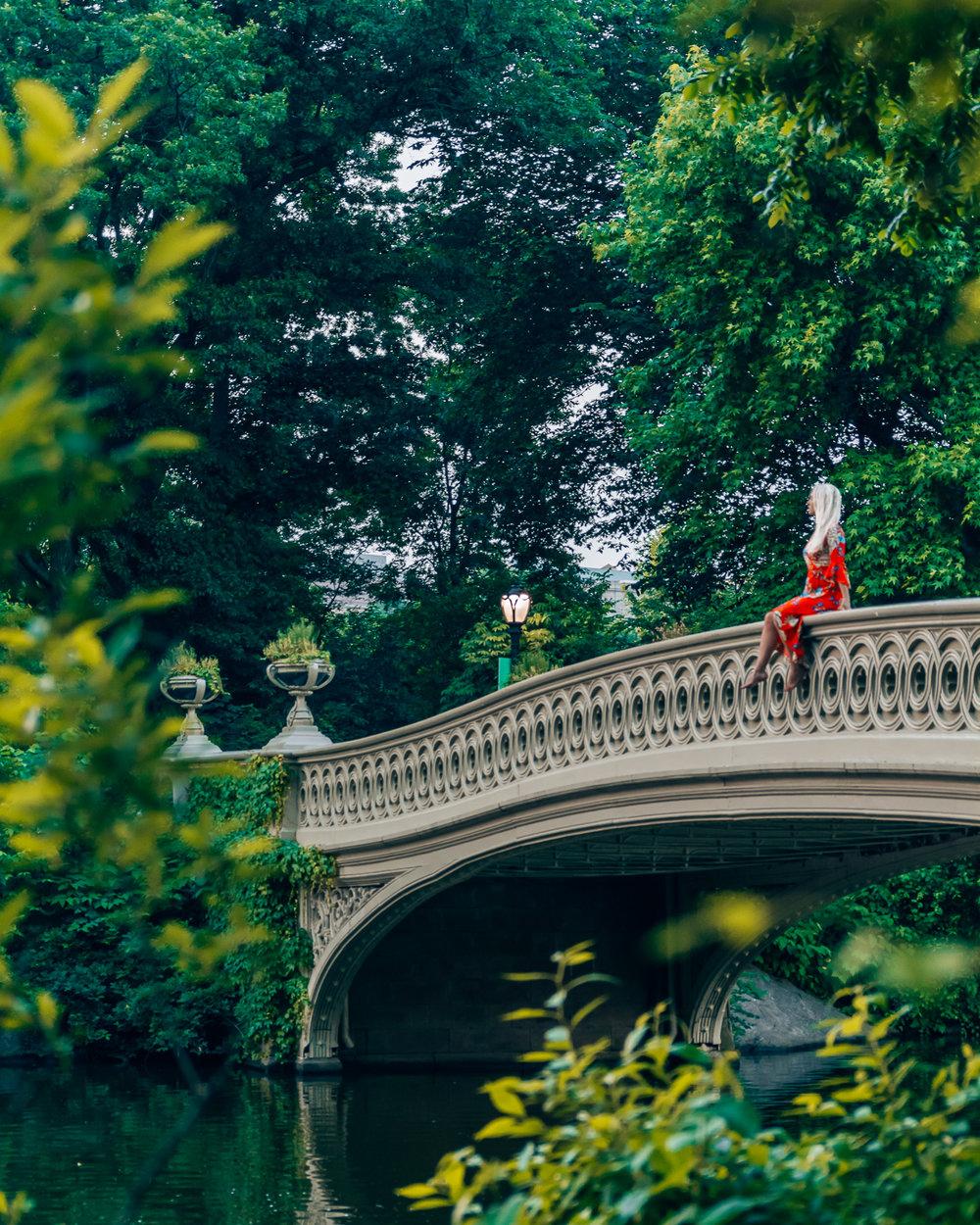 Central Park's Pond & Gapstow Bridge
