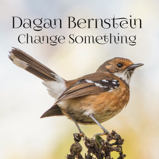 Change Something - An expressive singing voice and rhythmic acoustic guitar playing are featured in Dagan Bernstein's recent EP