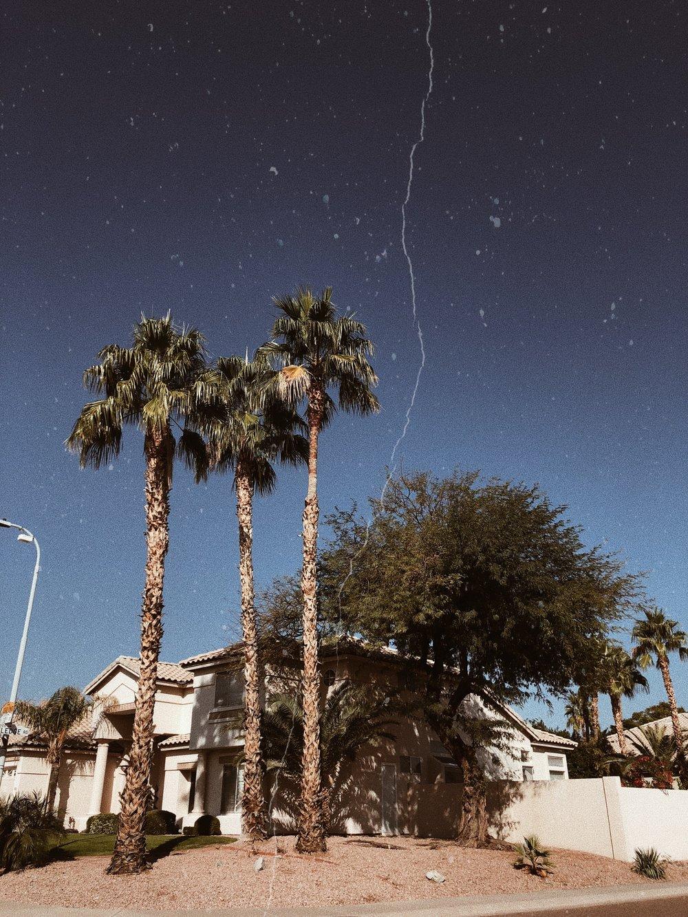 chasing denisse arizona