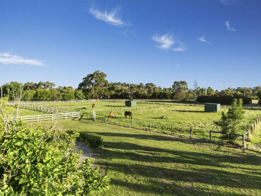 The Paddocks - We've ensured that the place where horses spend their most amount of time has been well thought out. Self-watering systems, shelters, improve pasture, post and rail fencing with electric's are just some of the basic fundamentals we've introduced.
