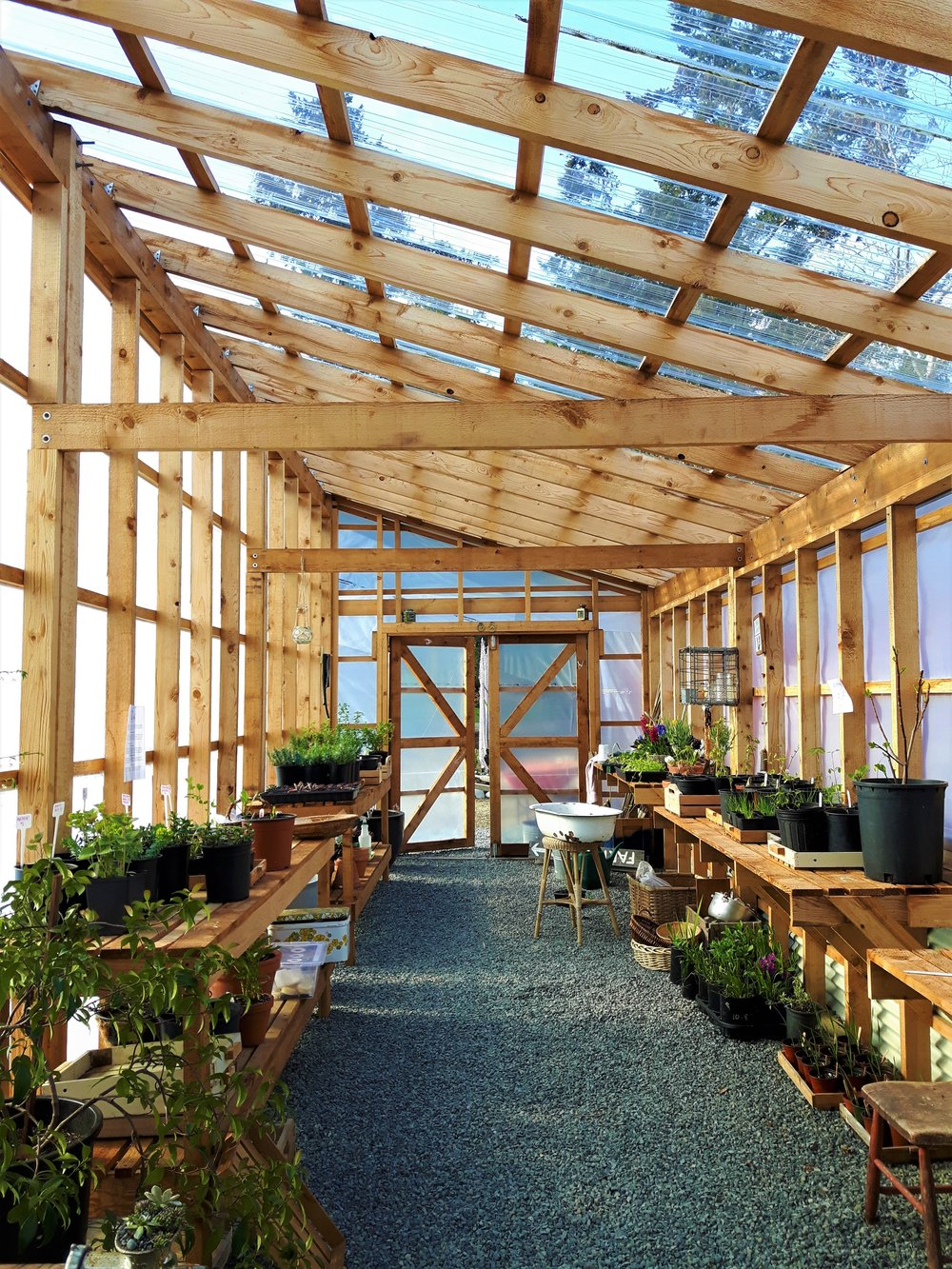 A little About Us - Back in 2015, Sue, a landscape designer, and Bill, a tugboat captain, moved from too busy Vancouver to Comox to live their dream by the sea and turn their half acre property of sand into a flower and vegetable farmstead. In 2017 they added a greenhouse and a farm stand.  2019 will usher in a new look for the farm as it evolves into a garden and nursery.