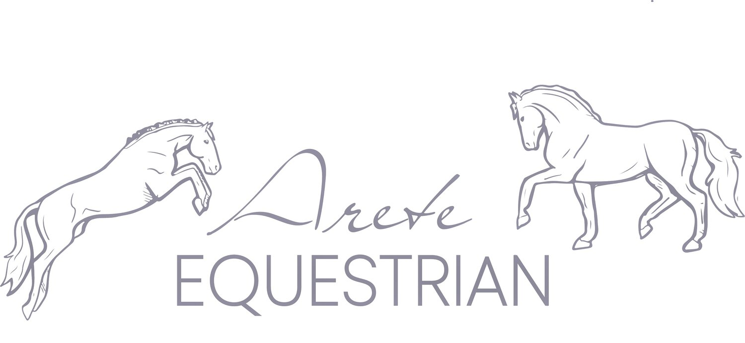 Riding Lessons And Training Arete Equestrian