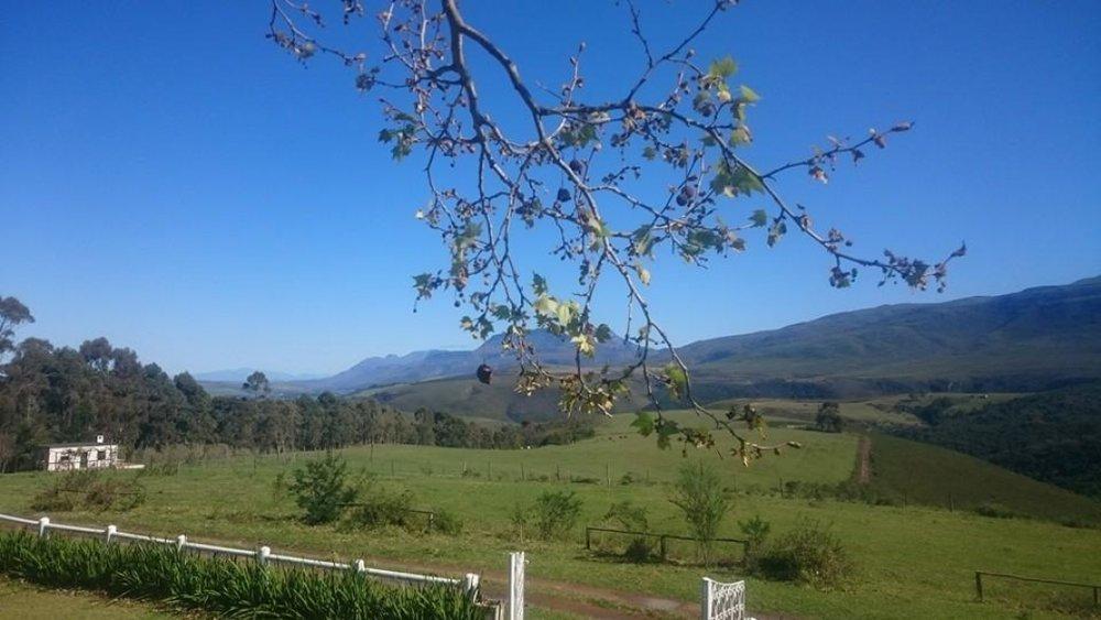 honeywood-farm.jpg
