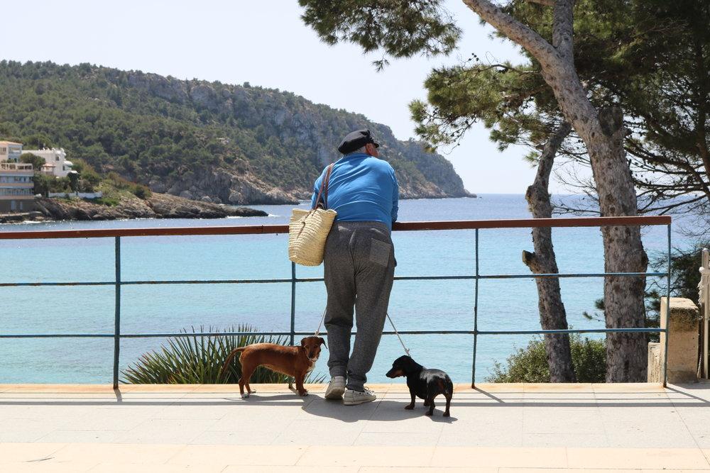 Koyunseven - Mediterranean Lifestyle.JPG