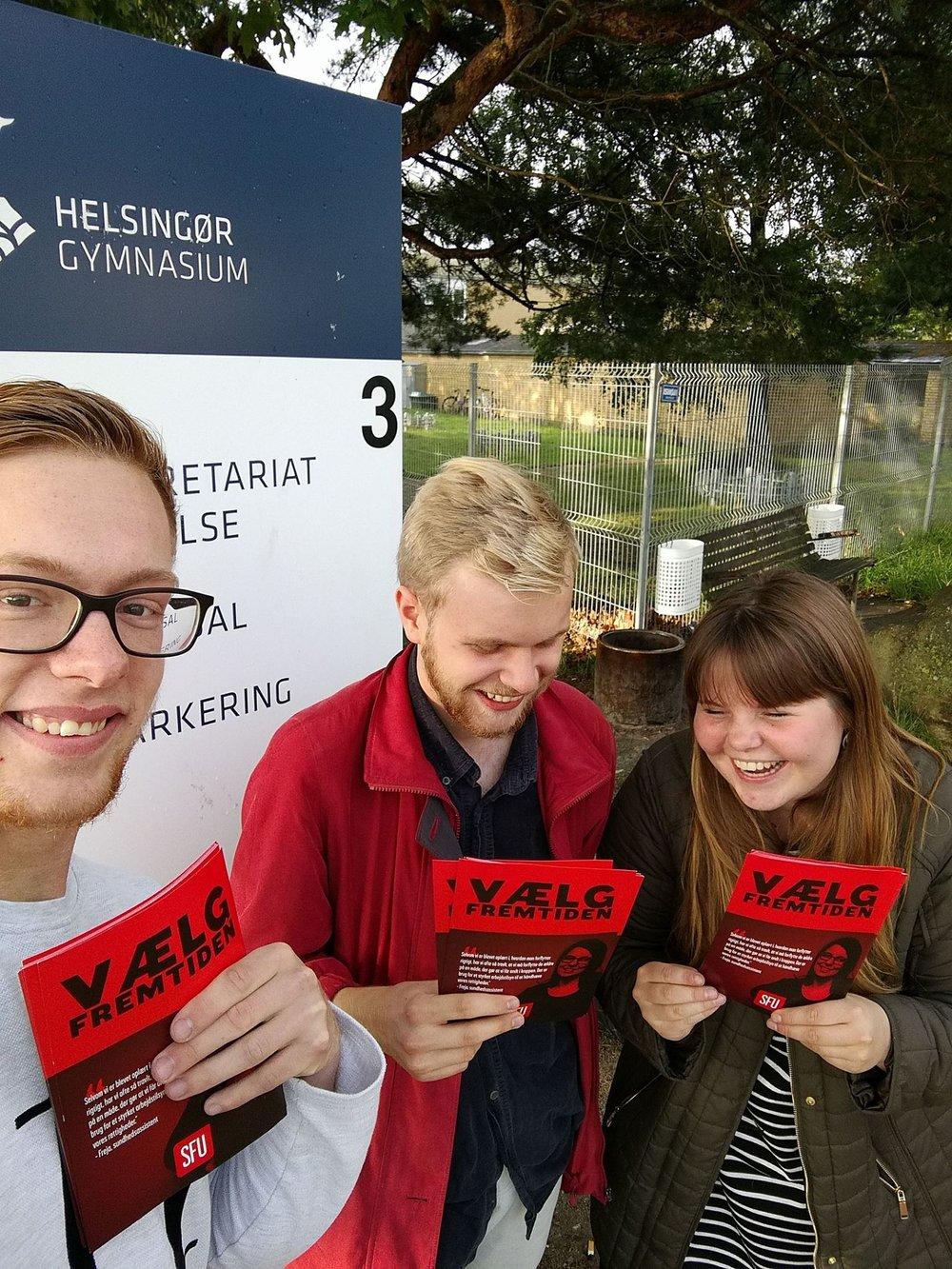 SFU Helsingør - ren.jpg