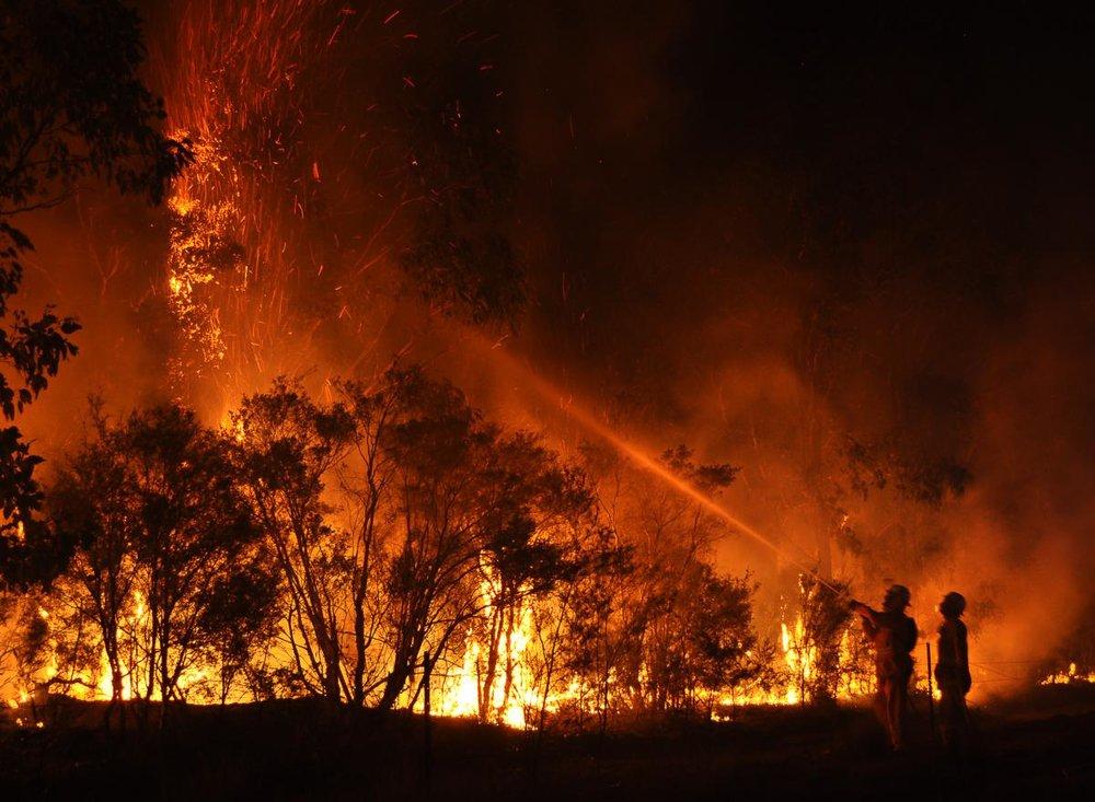 Brandmænd vs skovbrande og ildstorm