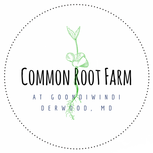 Common Root Farm