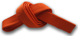 Orange belt - Progressing from white belt comes the orange belt (replaced by red in some organizations). The first colour after purity level which is associated to earth (soil) colour. The major focus at this level is understanding the physical base.Power and progress are built upon a solid foundation. Fundamentals such as your stances (eg. sanchin dachi) are very much reinforced and expected to be perfected.At this stage, a lifestyle and vision of ambition, gratitude, persistence and vitality should be adopted. Every student must establish a commitment to attending classes. There can be an internal battle for each individual in overcoming self-defeating stubbornness that resists the desire to attend lessons. It is your battle to win. Orange belts should be enthusiastic in training, treasures dreams of greater things to come.
