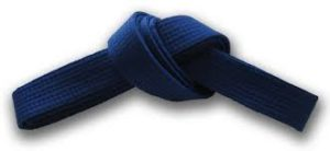 Blue belt - Blue, the symbolism for colour of water.Blue belt at this level develops a basic ability to adapt and react fluidity. Just as water adapts to the shape of whichever object is holding it. Adaptability grows through kumite (sparring).Independence begins to establish itself, the student learns to adapt karate to best suit his physical strengths and weaknesses. Development for a strong body, especially in the torso and arms takes place. Special attention is paid to training push-ups using the forefists and finger tips.In terms of flexibility (physical and mental), students at this level should do relatively well in stretching (which can be achieved through regular stretching).Enthusiasm wanes sometimes to the point of despair, with desire to give up. Remember these are part and parcel of training; being able to recognise stumbling blocks in your journey of learning and appropriately dealing with them successfully is essential.Stay calm in the midst of a raging battle (be it during kumite or your internal battle), the spirit and mind of a true Kyokushin Karate student shall remain unshaken.