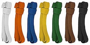 kyokushin-belt-colors.jpg