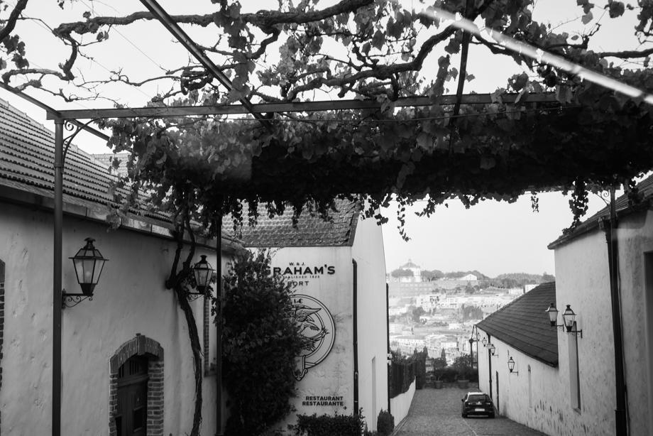 WebQuality-Porto-10yearsVentigrate-AnaisStoelenPhotography-24.jpg