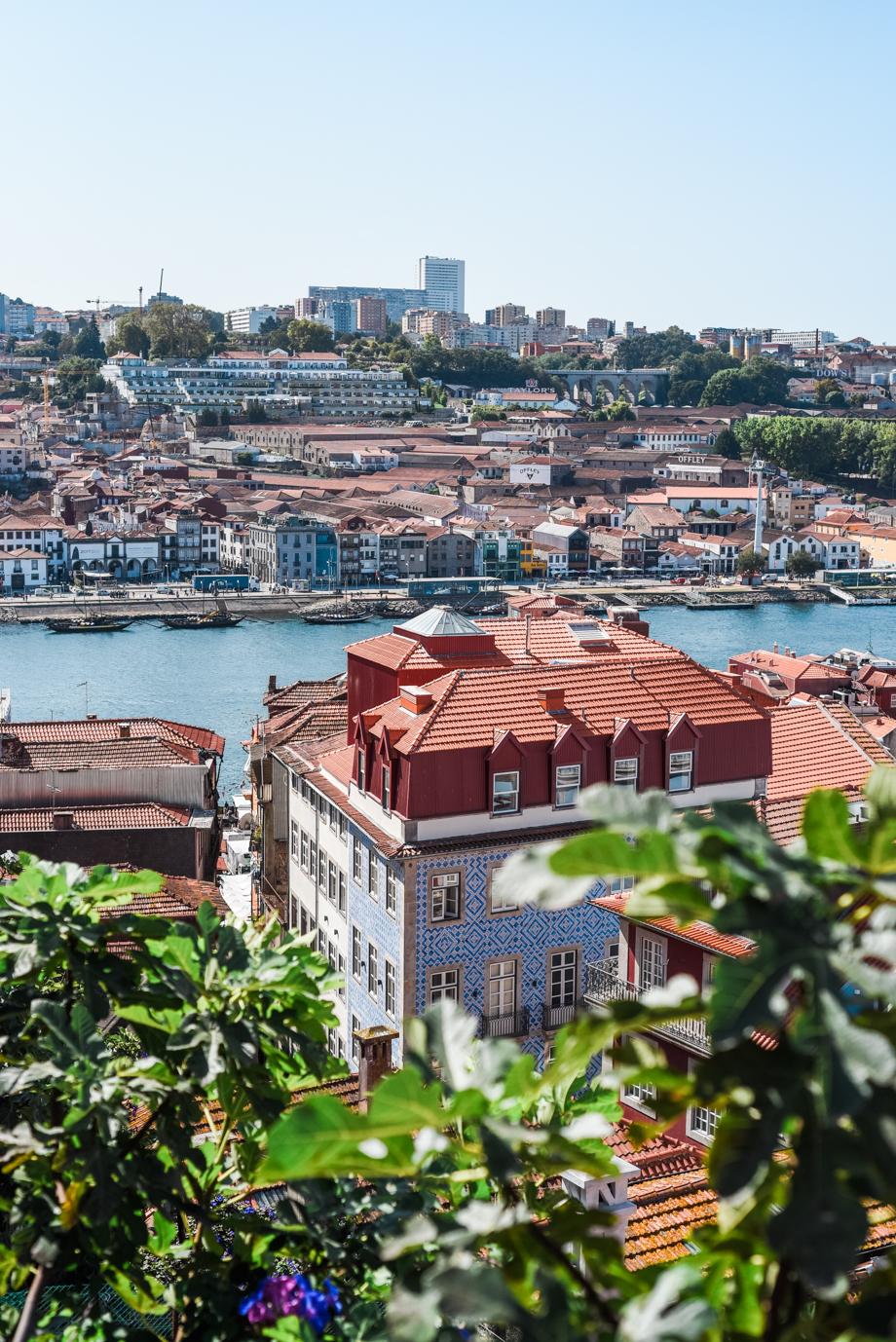 WebQuality-Porto-10yearsVentigrate-AnaisStoelenPhotography-133.jpg