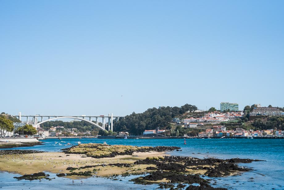 WebQuality-Porto-10yearsVentigrate-AnaisStoelenPhotography-172.jpg