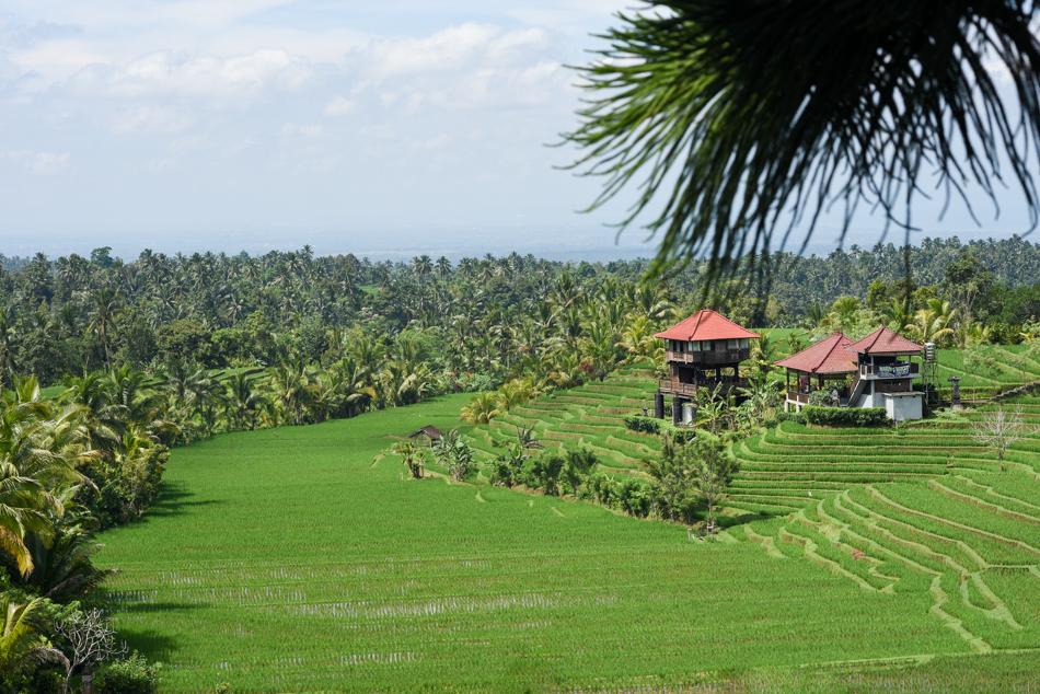 Bali-Honeymoon-Travel-AnaisStoelen-43.jpg