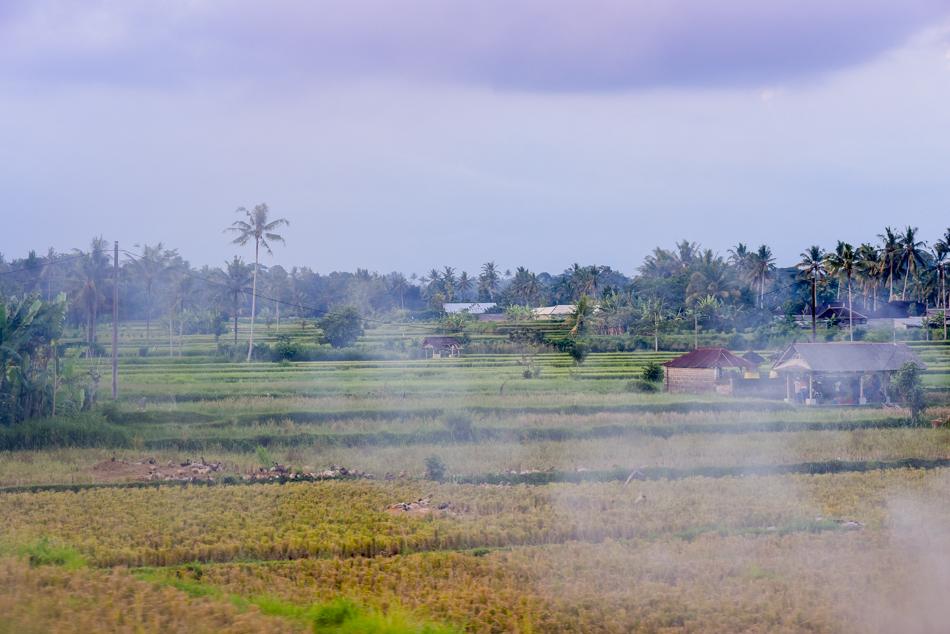 Bali-Honeymoon-Travel-AnaisStoelen-60.jpg