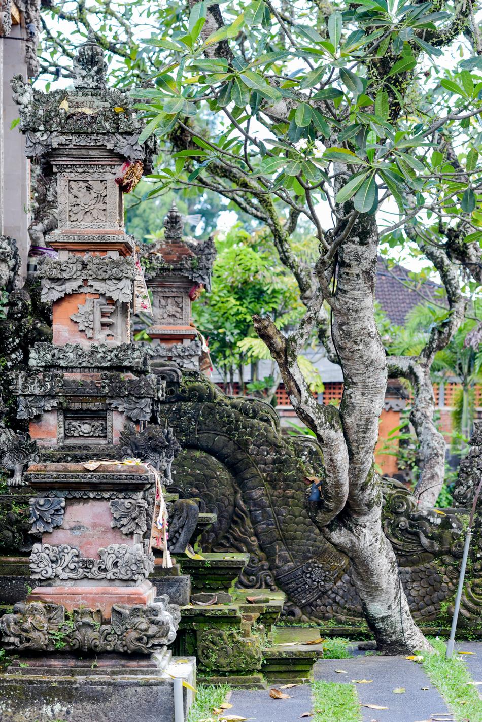 Bali-Honeymoon-Travel-AnaisStoelen-73.jpg