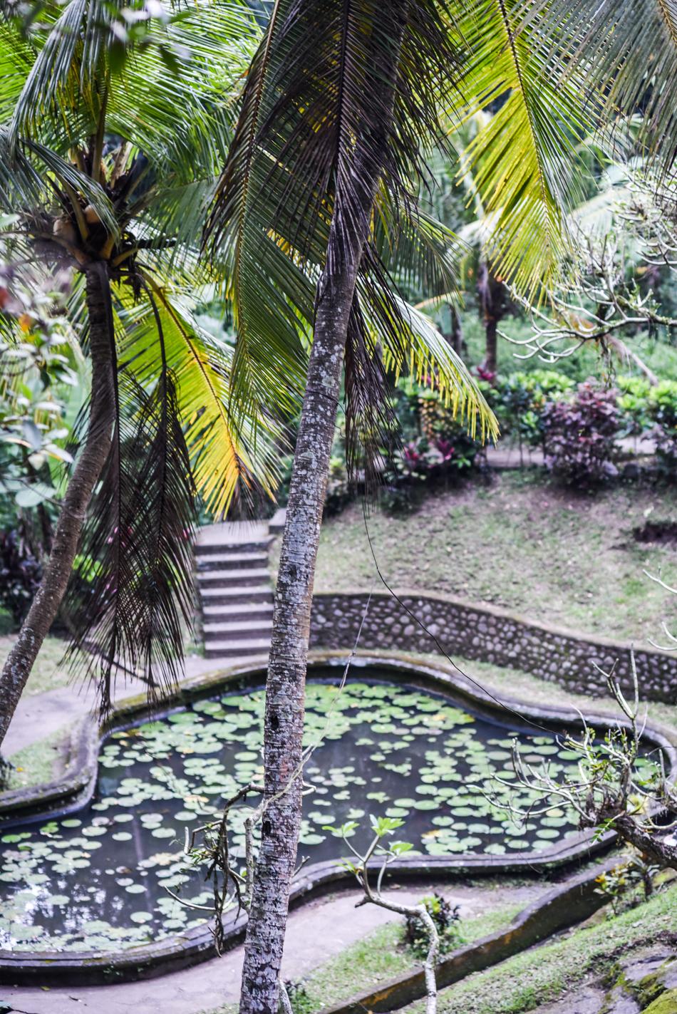 Bali-Honeymoon-Travel-AnaisStoelen-88.jpg