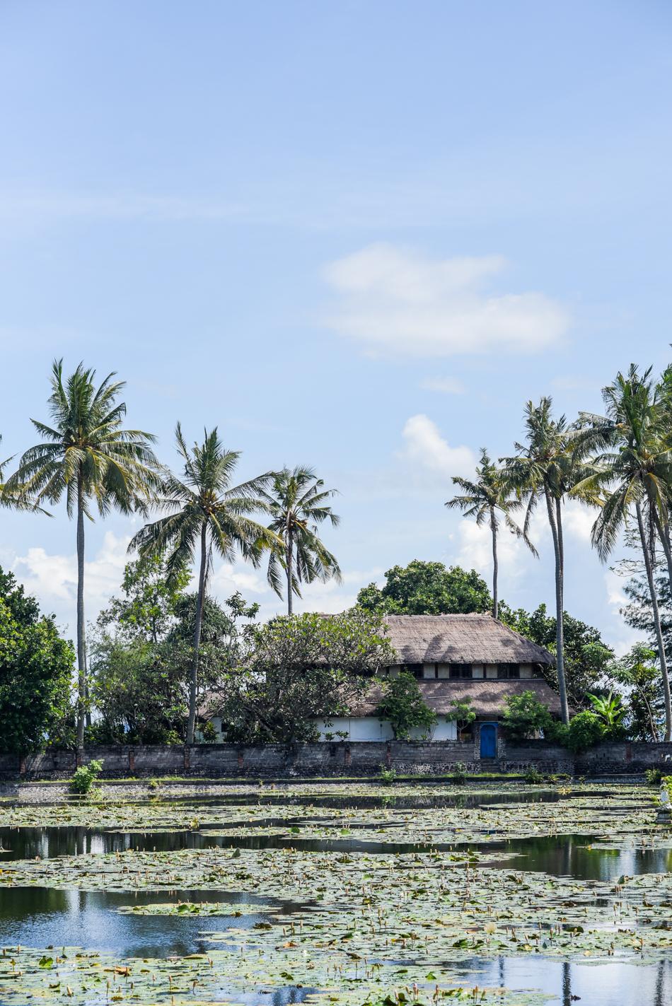Bali-Honeymoon-Travel-AnaisStoelen-108.jpg