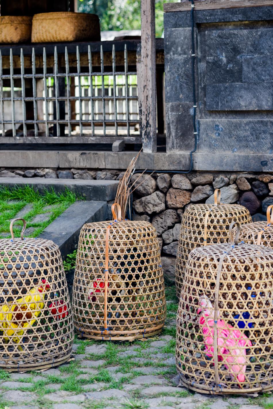 Bali-Honeymoon-Travel-AnaisStoelen-109.jpg