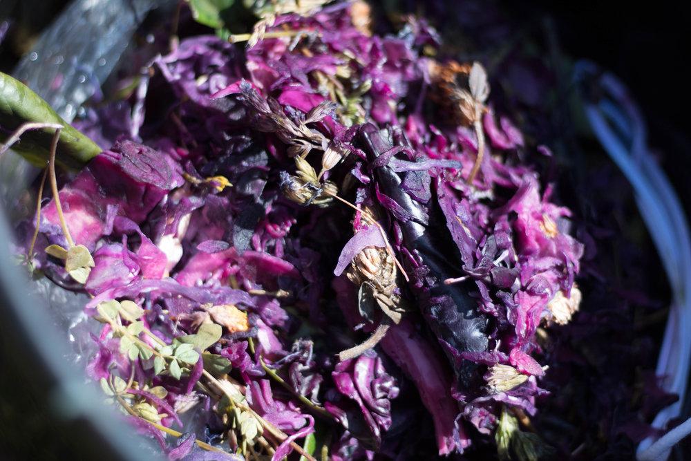 Resterna från färgen, som här är rödkål och blommor, återvinns sedan i komposten.