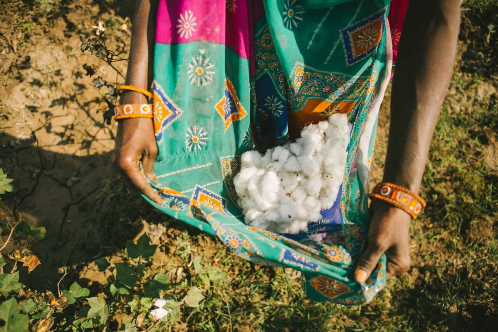 Rapanui_India_Cotton_January_2018-212.jpg