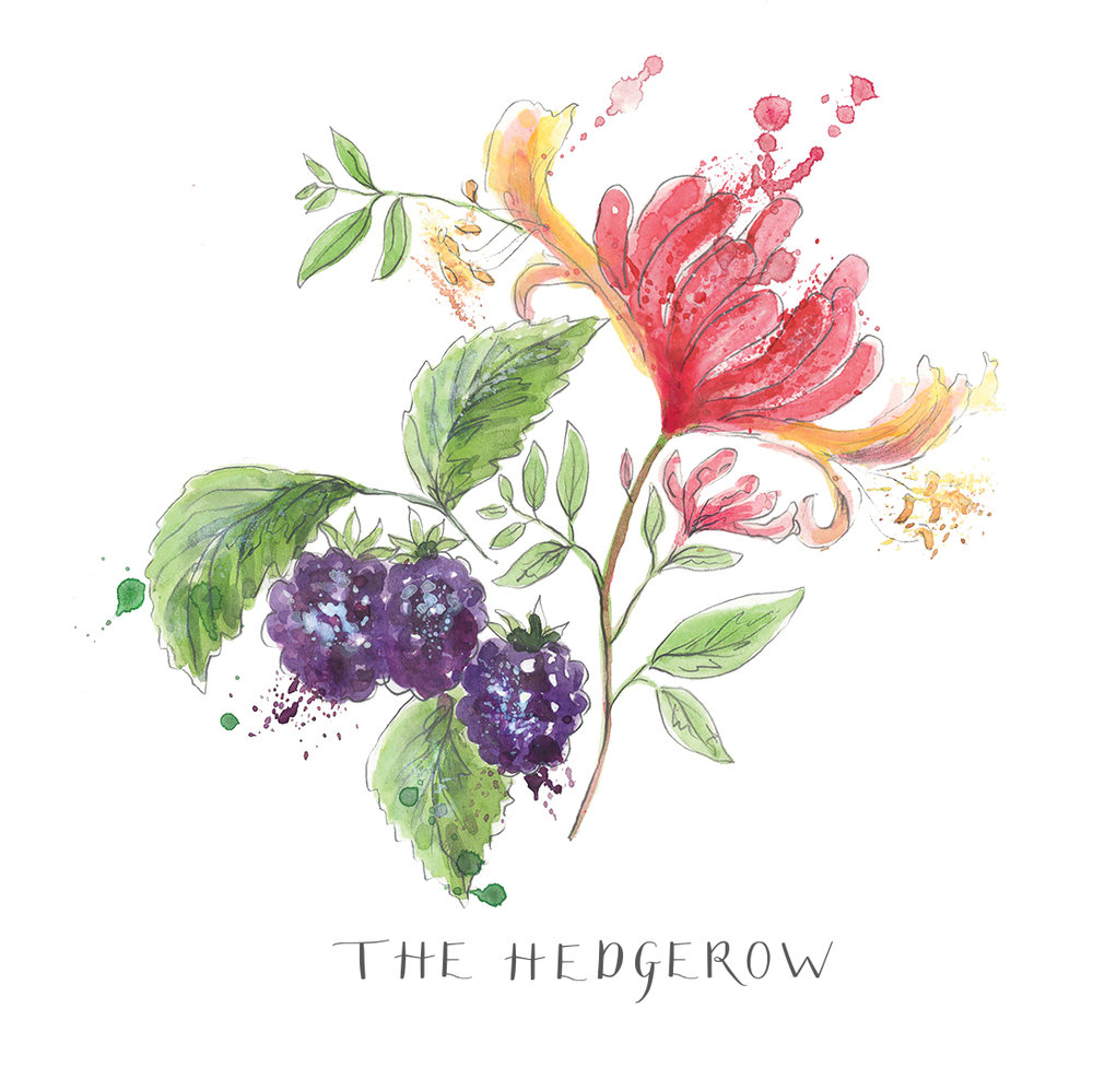 The Hedgerow_RGB.jpg