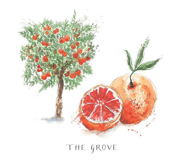 The Grove_RGB.jpg