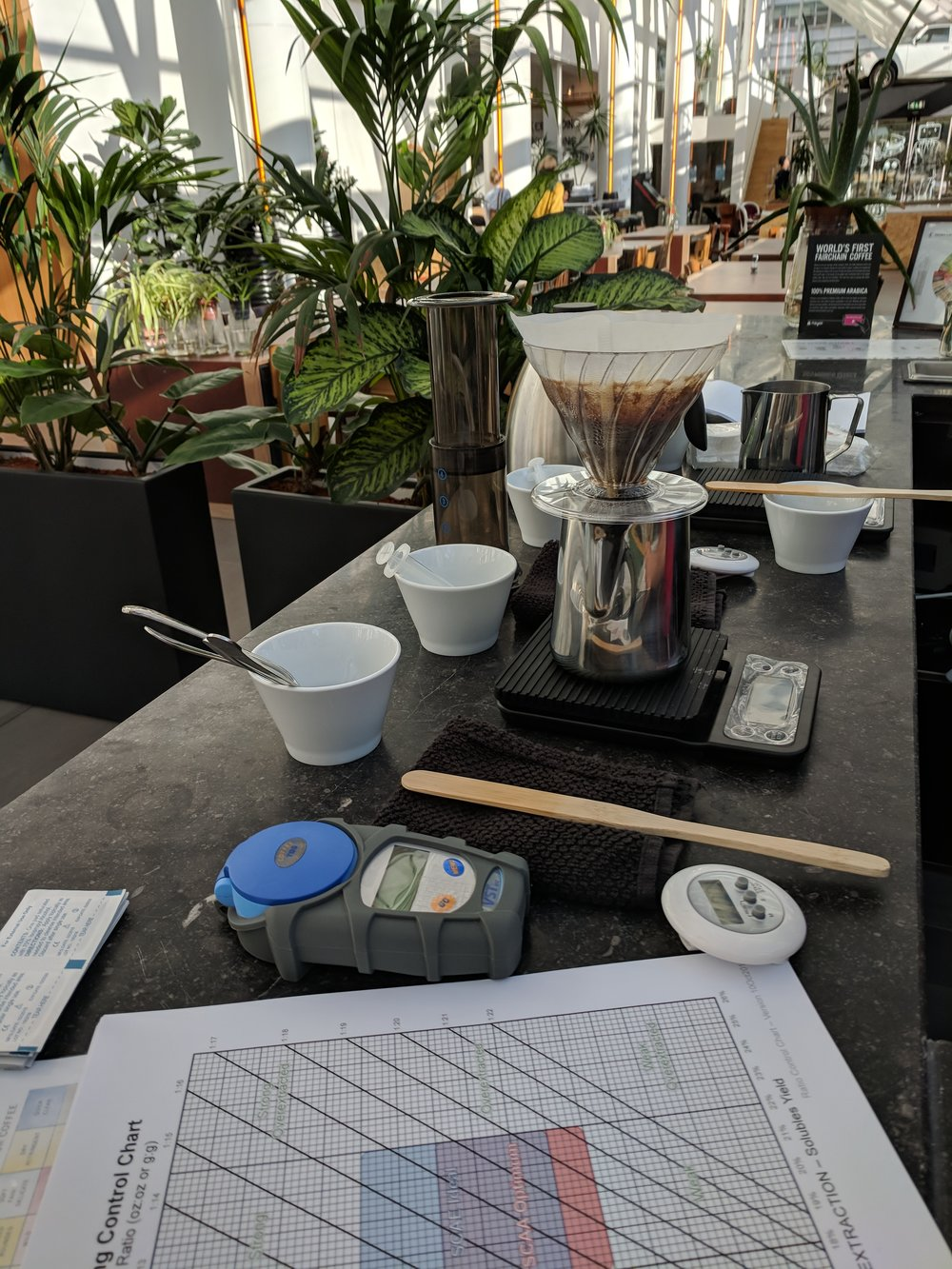 Brewing Intermediate - Sept. 2018 Amsterdam