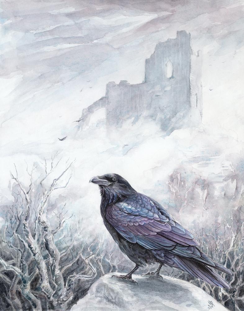 birdwhisperer_raven_300_11x14.jpg