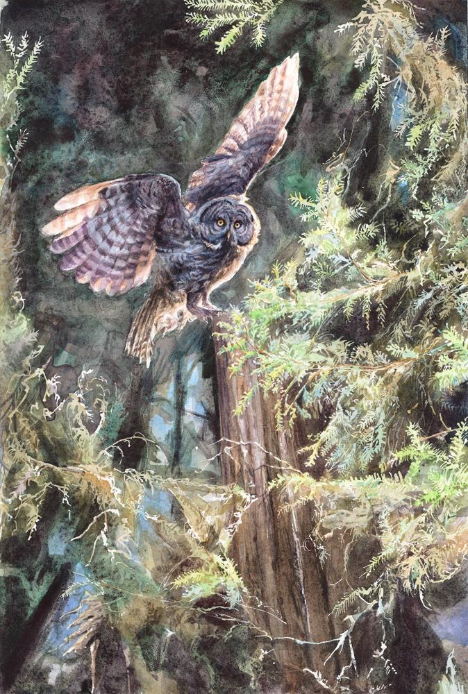 Owl_10inch.jpg