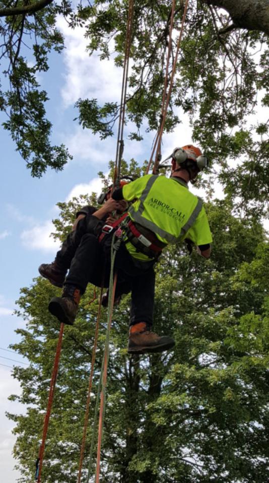 Aerial Rescue Drills