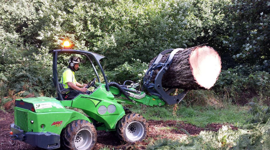 Felling & Site Clearance