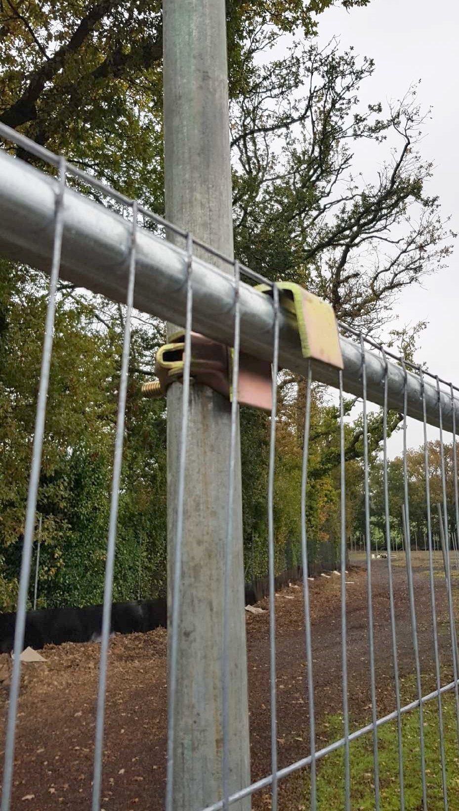 Tree Protection Fencing.jpg