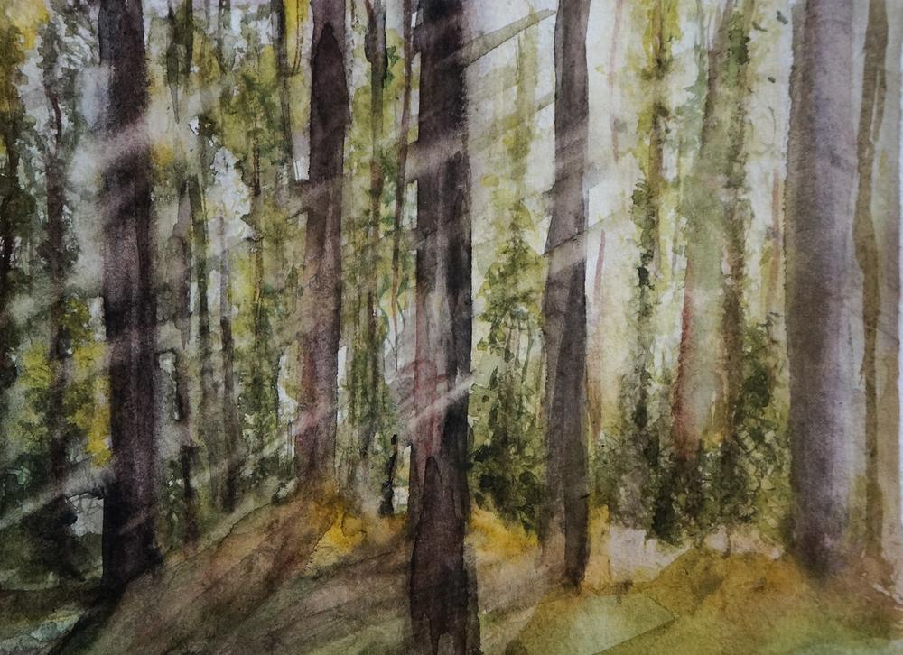 Xiao-FariadaCunha-Sunrise-forest-9x11.png