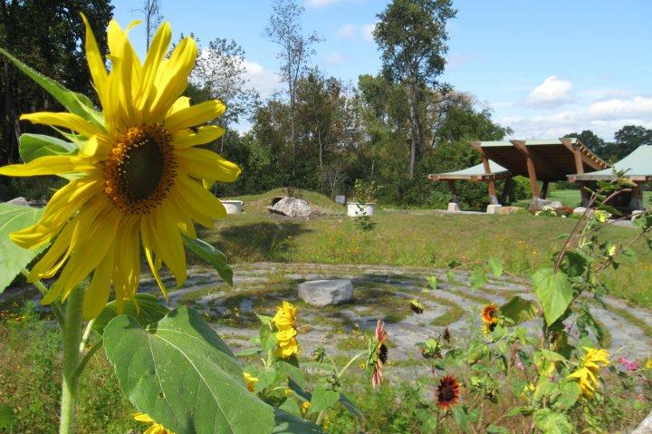 The Play Garden -