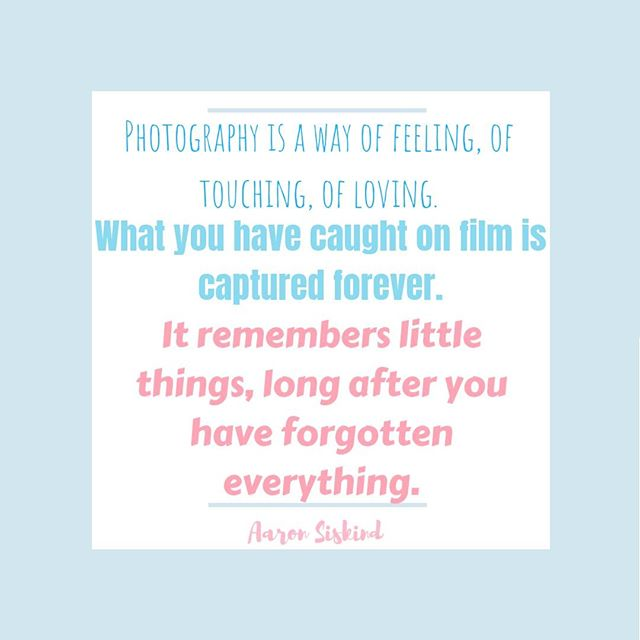 Such a great quote describing how me and probably lots of others feel about photography.  What's your favorite aspect of photography or even of photos?  Comment below!