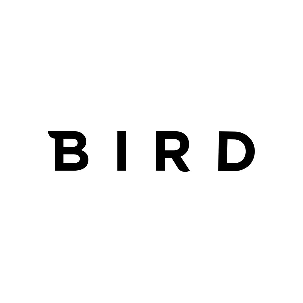 Bird_v4.jpg
