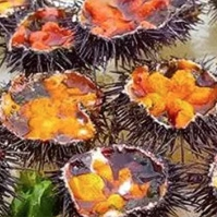 SEA URCHINS - We'll clean them for you and give you the yummy stuff, as long as you keep them on ice and eat them within two days.Buy online now through Sunday, July 1, and pick them up on Friday, July 6.