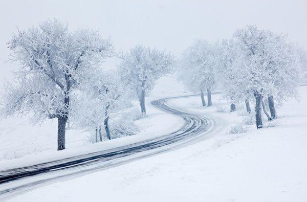 Winter-(1).JPG