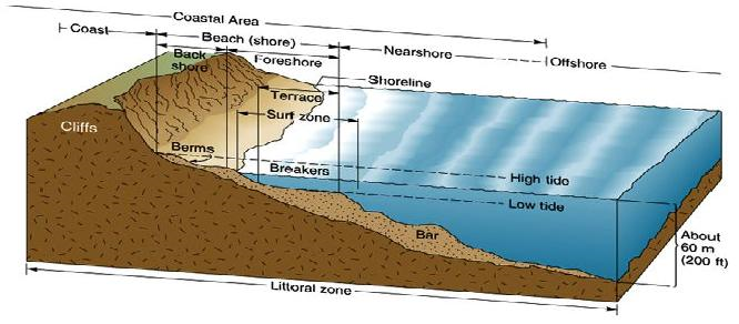 Intertidal zone: the intertidal zone (also known as the foreshore, and sometimes referred to as the littoral zone) is the area that is exposed to air at low tide and submerged at high tide (area between tide marks).