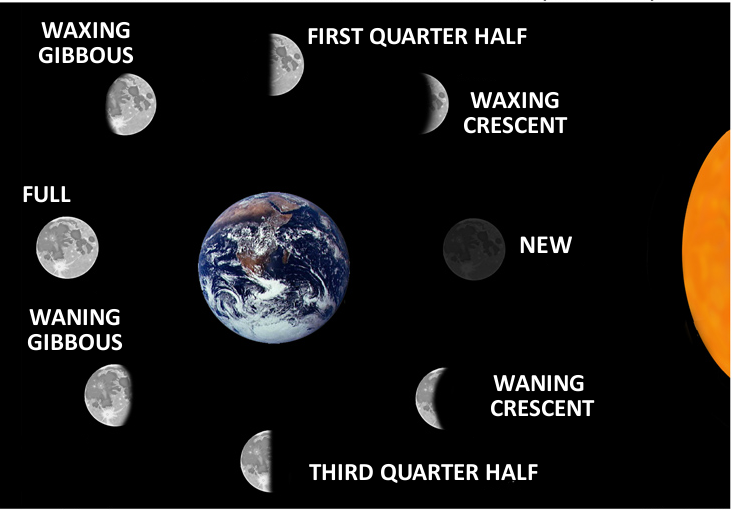 moonphases-4.png