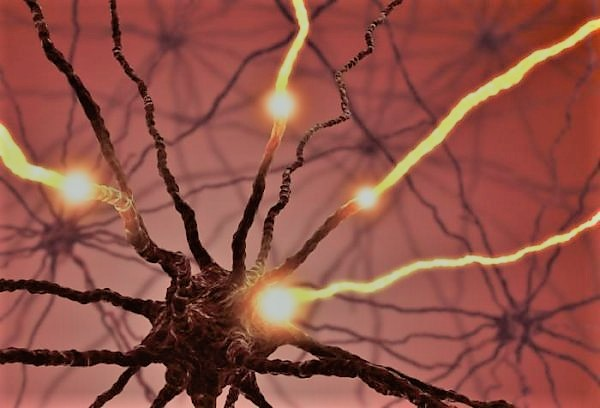 Serotonin: the brain's primary chemical and neurotransmitter of electrical impulses