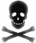 skull_and_Crossbones.jpg