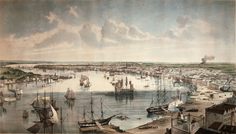 D. W. Moody:  New Orleans from the Lower Cotton Press  (1852)